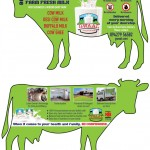 Cow_Flyer_FINAL